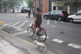 Dog walk.