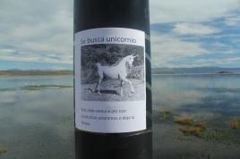 Lost unicorn.