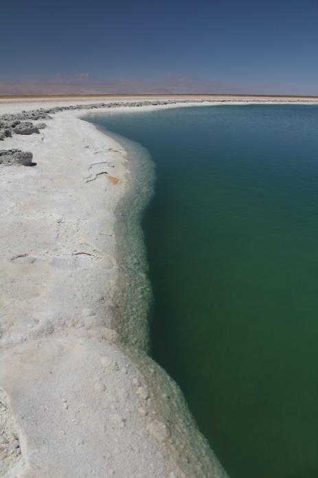 Laguna Cejar Two.