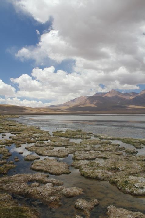 More laguna.