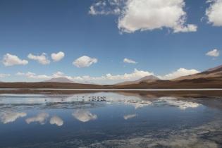 Laguna Chiguana.