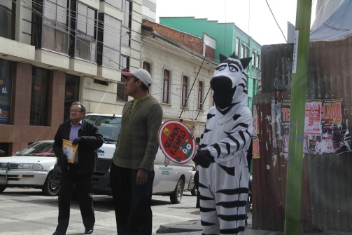 Cebra.