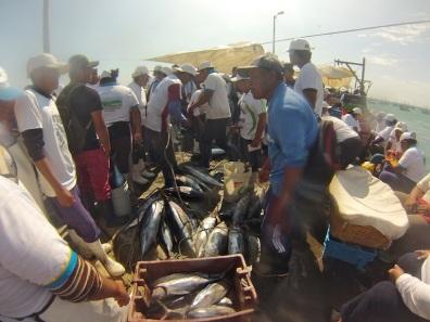 Fishermen, El Nuro pier, Peru