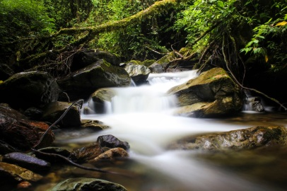 Long exposure, Valle Del Cocora, Salento, Colombia