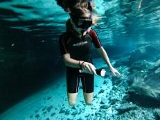 Snorkel Dos Ojos, Mexico