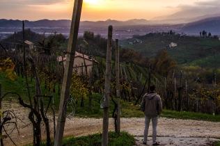 Cartizze, Vittorio Veneto, Italy