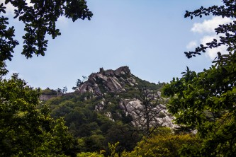 The Castle of the Moors, Sintra