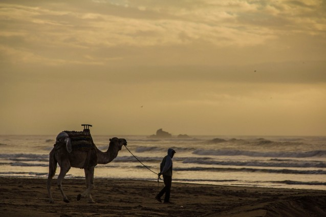 Essaouira beach, Morocco