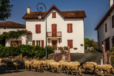 Anhaux, France